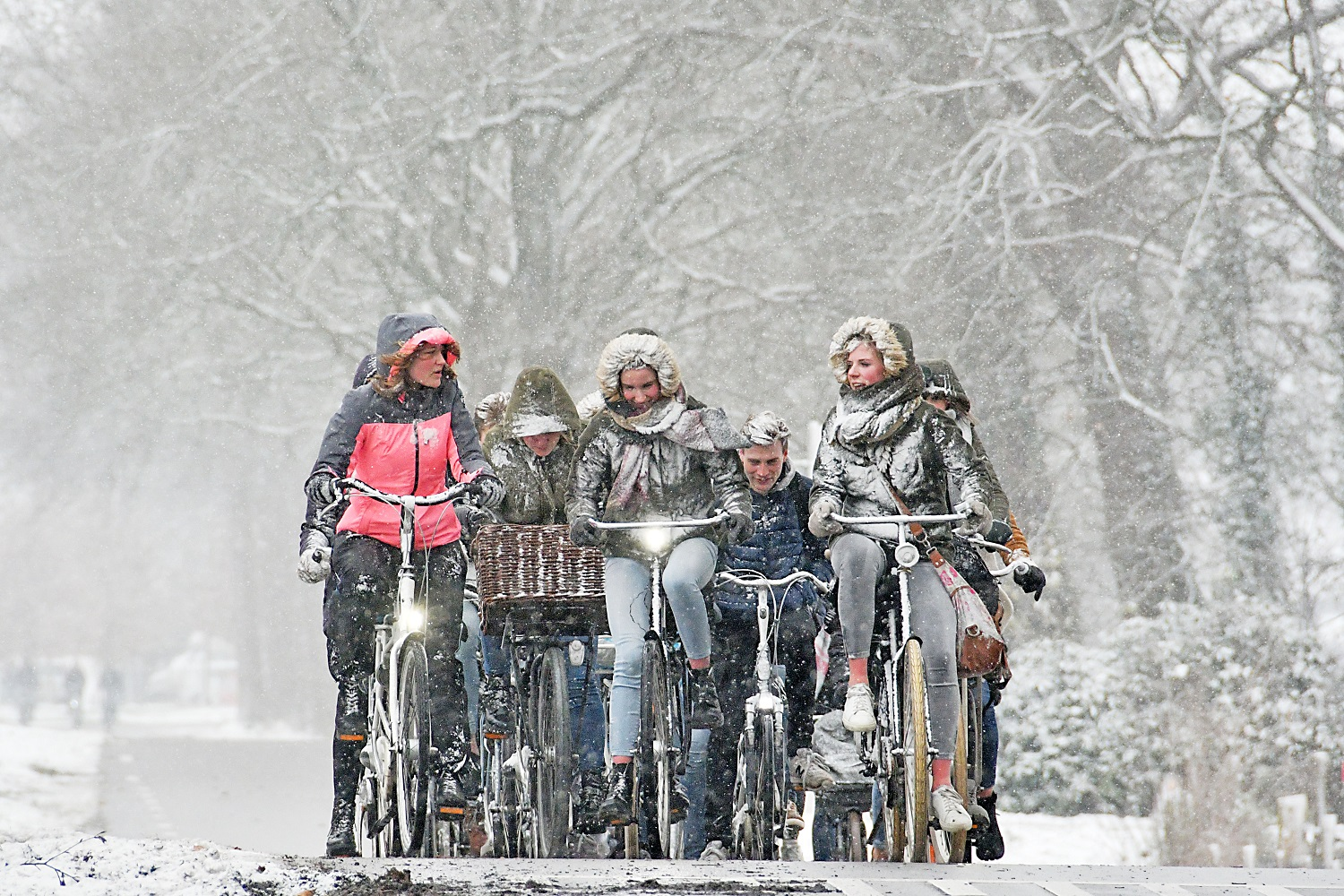 Cycling In The Netherlands Xpatnl